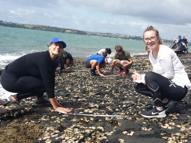 College Biology Classes Study Rocky Shore