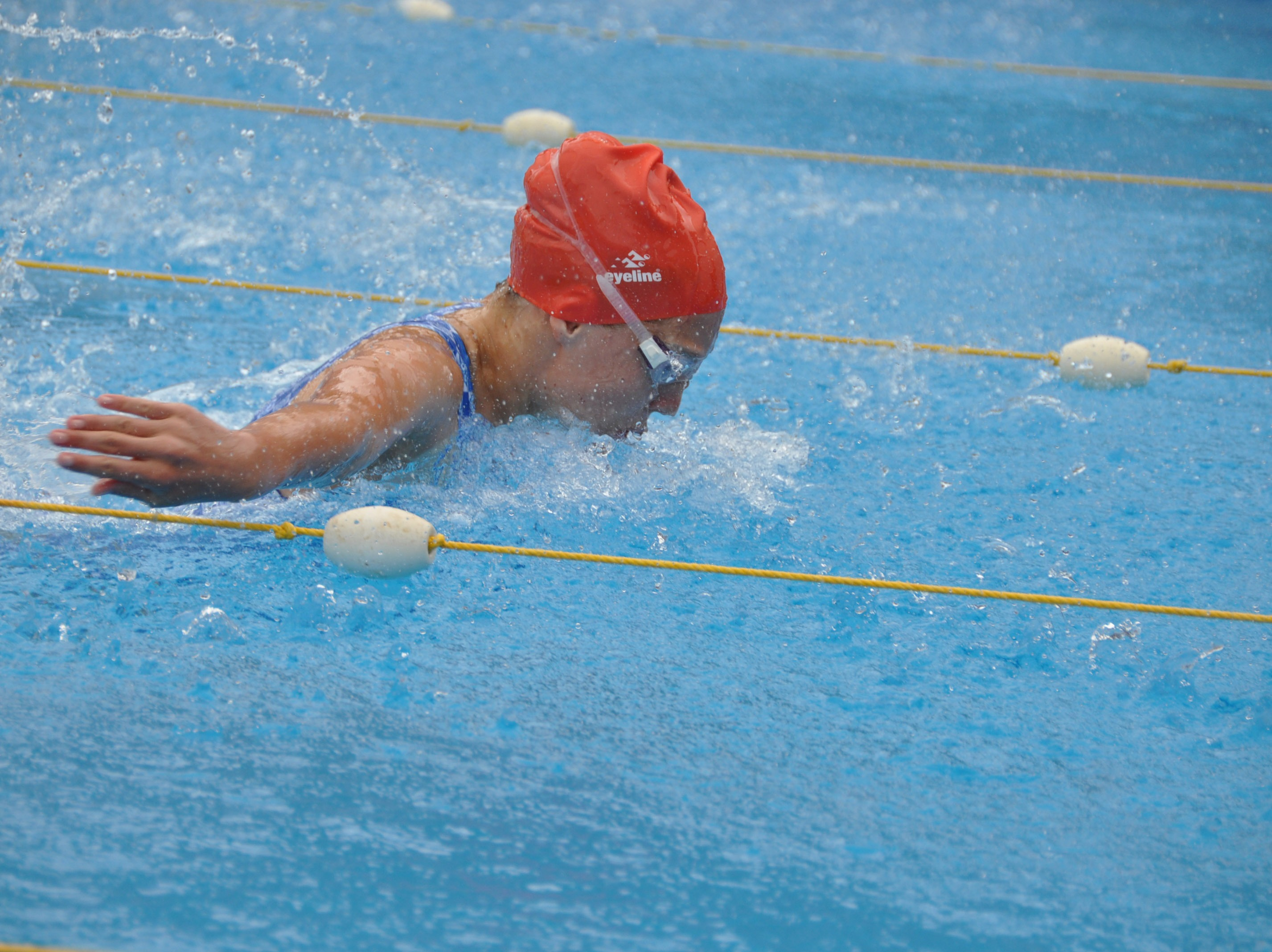 Hamilton Defends College House Swimming Title