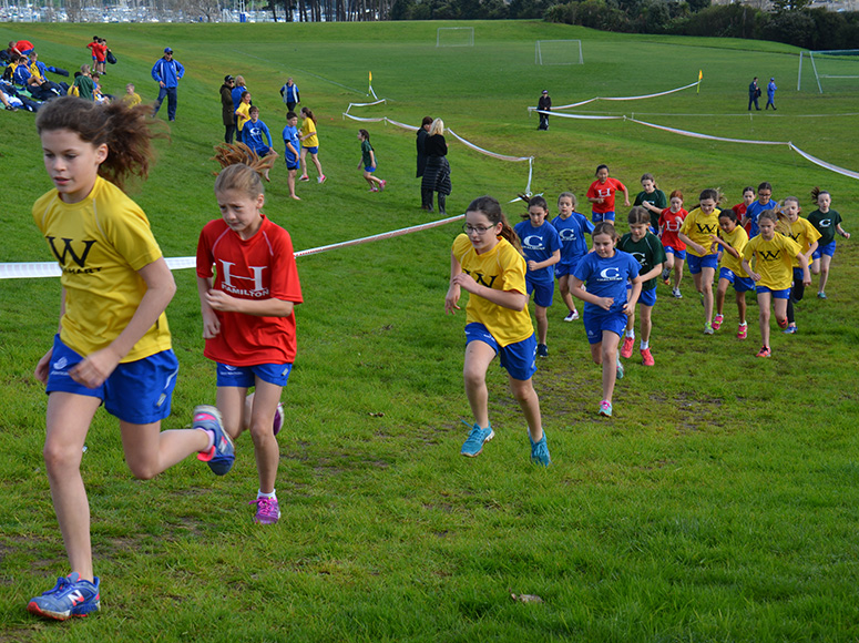 Girls' School Cross Country
